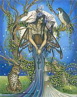 Summer Nights - Fairy Art Print
