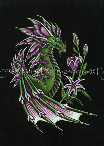 Stargazer - Limited Edition Dragon Art Print